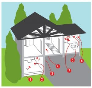 Maryland Home Inspection Radon Entry Points